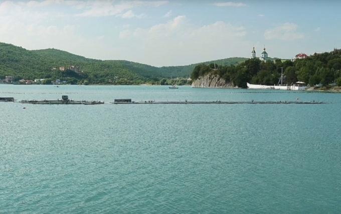 курорты краснодарского края дивноморское