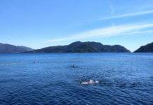 горящие туры на эгейское побережье Турции