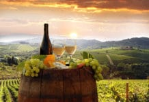 топ 5 вин Тосканы