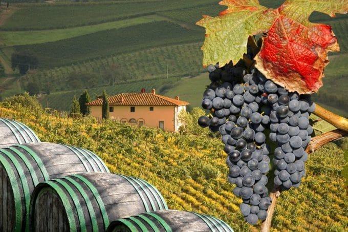 винодельни в Тоскане